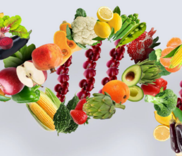 Personalized Nutrition Programs——YOUR DNA, YOUR DIET