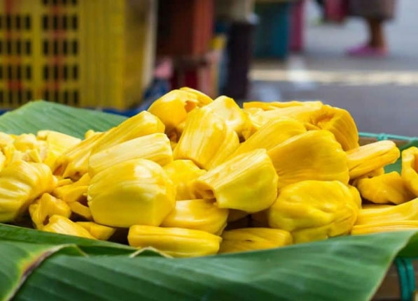 Jackfruit and its Cancer Killing Potential