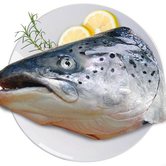 Purchase Salmon Head