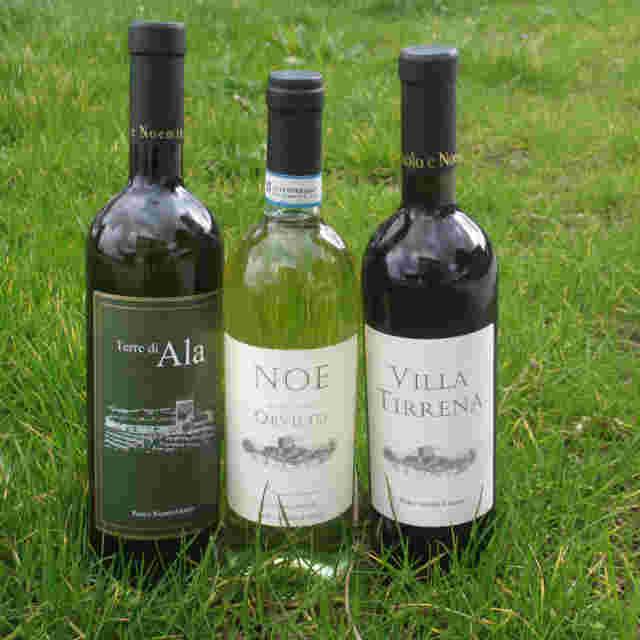 AFood dry white wine