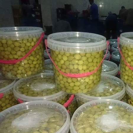 Egyptian imported food,mixed garden food, canned vegetables or pickles