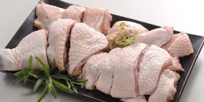 Frozen Chicken Meat suppliers