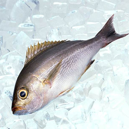 Imported seafood, frozen fish, Ukrainian food
