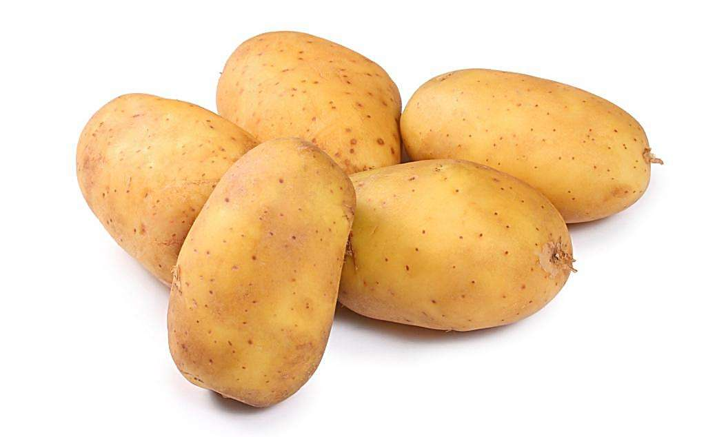 Supply Irish Potato