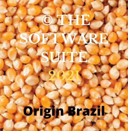 Yellow Corn Non-GMO Animal Feed