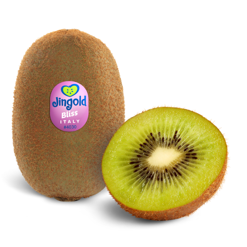 Jingold green kiwifruit Italian fruit kiwi from Italy
