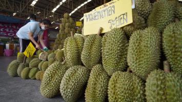 Thailand exports fruit to China through railway border gate