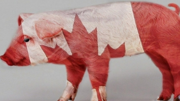 Canadian pork and beef exports to China will resume