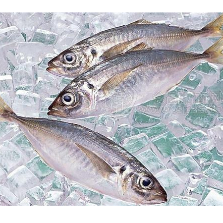 Buy frozen aquatic products, imported seafood, seafood, etc