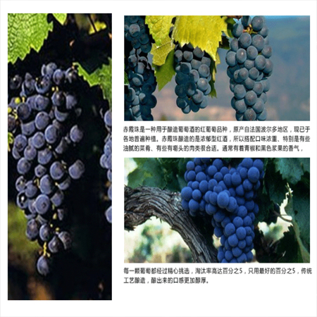 Supply imported red wine, wine, dry red wine, imported from France, cassimelo