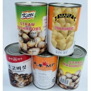 sell Canned Straw Mushrooms & Canned Oyster Mushrooms