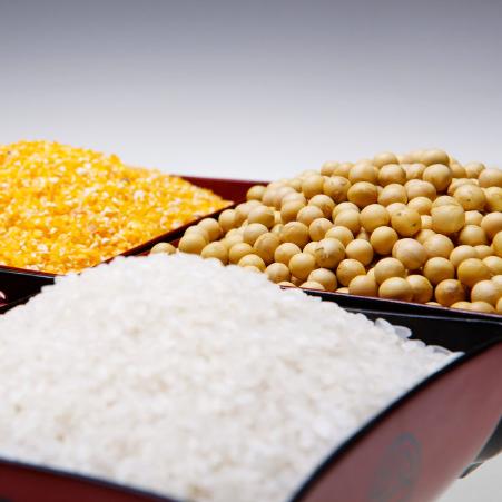 Offer sugar, soybean gmo, yellow corn, rice ,origin brazil
