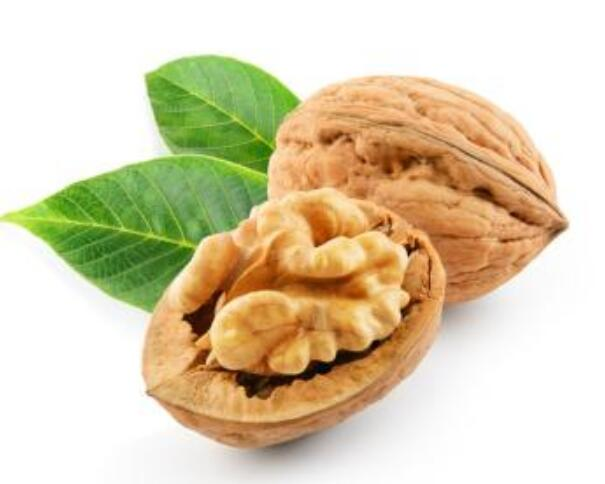 Looking for Walnut to GD