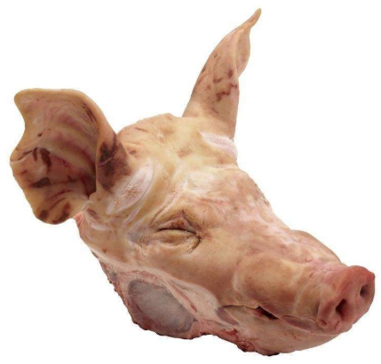 Import pig head, Canada 12 factory