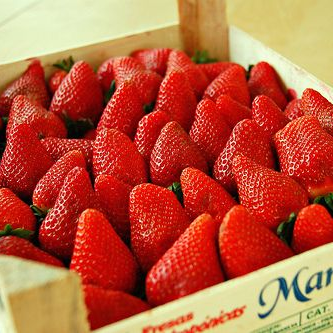Organic strawberry supplier