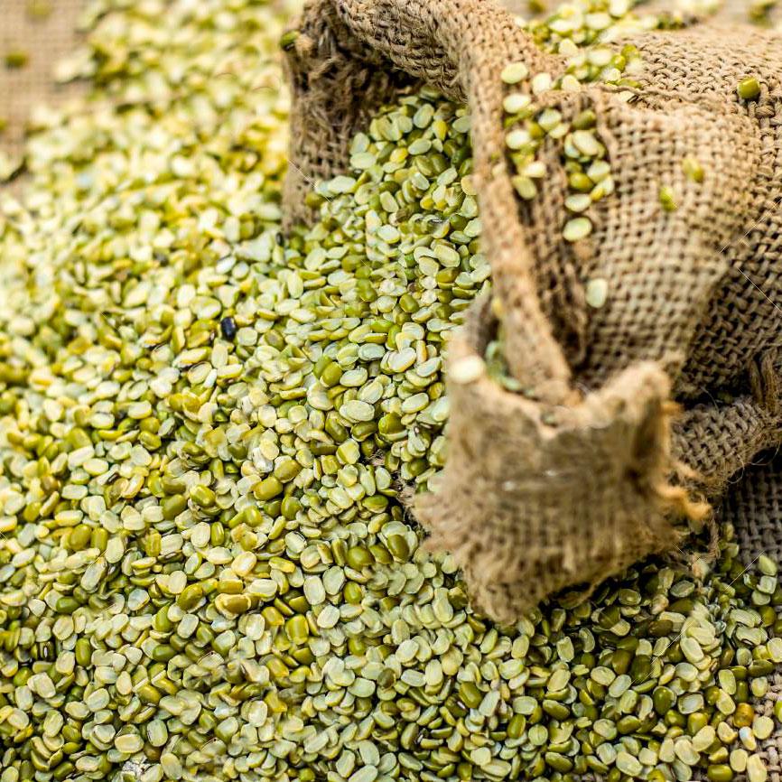 Supply Indian Bean Split Green Gram