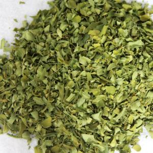 Natural Moringa Dried Leaves Export From India