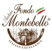 Balsamic Vinegar of Modena Organic FM03