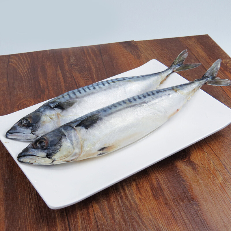 Purchase Imported Water-Cooled Mackerel Seafood