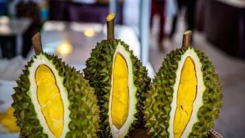 FOOD2CHINA: Thailand to resume durian exports