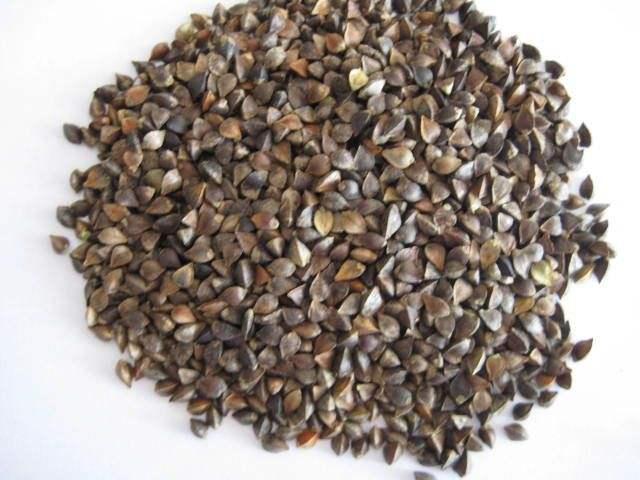 Buy Buckwheat Grain