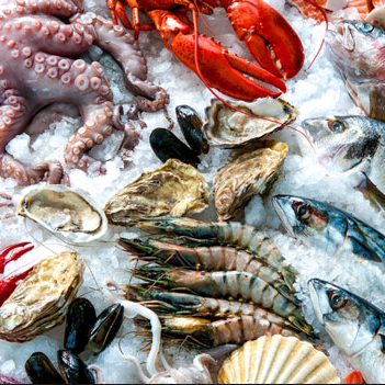 Seafood: fish, lobster,sleeve-fish
