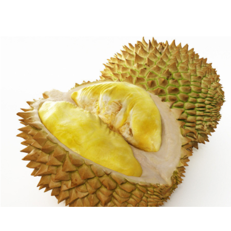 Buy frozen durian, Thailand durian, imported fruit
