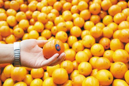 China citrus market lifts on limited supply | FOOD2CHINA NEWS
