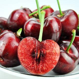 Fresh Dark Red Cherries Sour Cherries/ Sweet Cherries