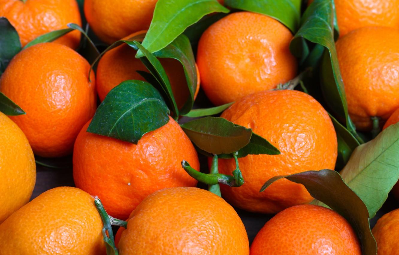 Chile achieves milestone with inaugural mandarin export to China