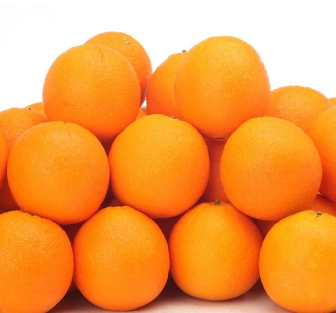 US Grown Fruit Sweet Sour Orange Navel Robinson Fresh MOQ 72-88 COUNT Quick Delivery in US