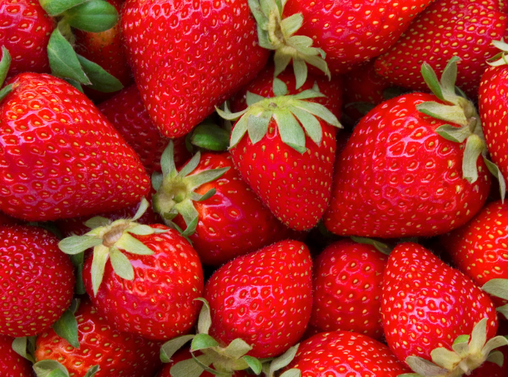 US Grown Fragaria Red Fruit Strawberry Robinson Fresh MOQ 1 LBS Quick Delivery in US